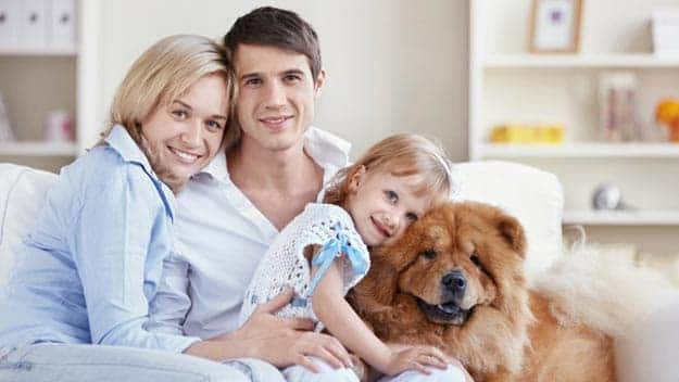 Wills & Trusts dog-young-family Direct Wills Notting Hill